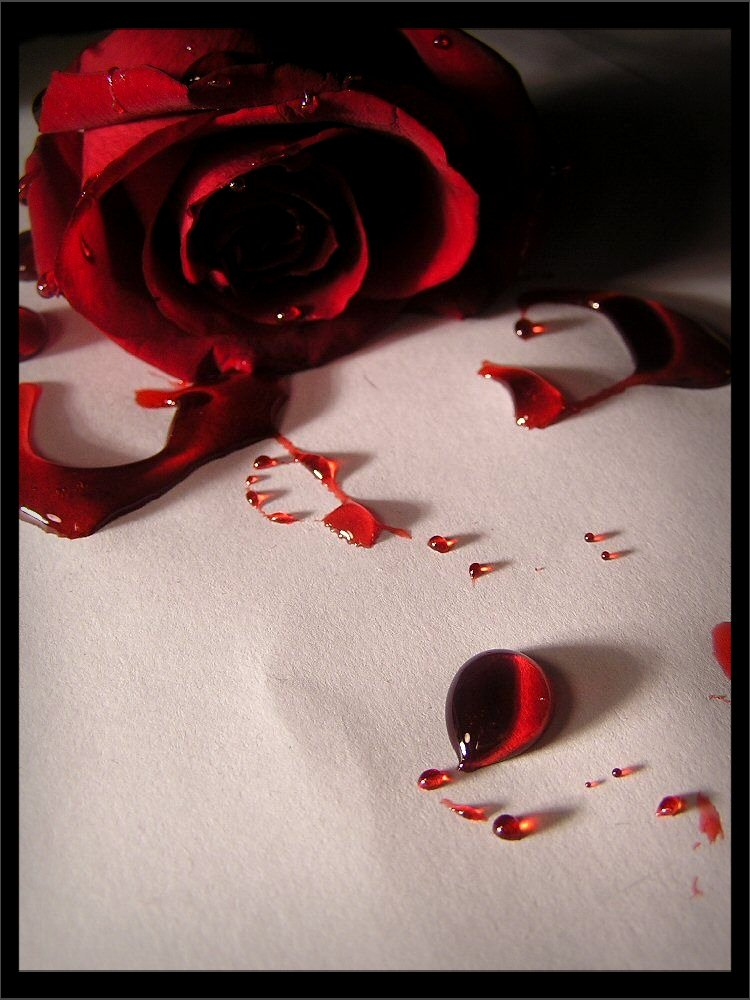 Blood Drinking Blog 2